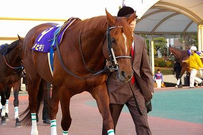 川崎記念は、王者カネヒキリが貫禄の勝利、史上最多タイGI7勝目_b0015386_0112567.jpg