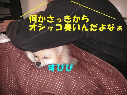 c0179136_2443659.jpg