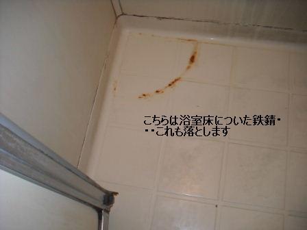 f0031037_20241640.jpg