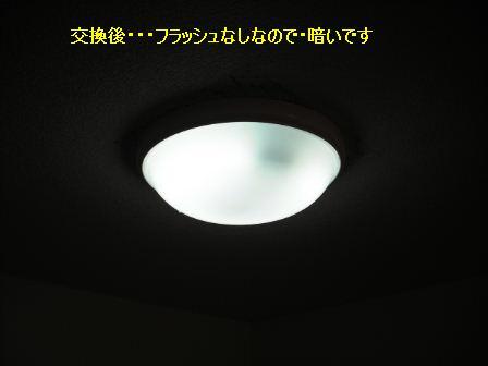 f0031037_20303176.jpg