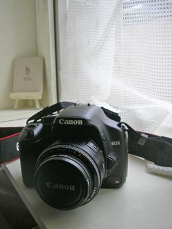 f0032340_1336052.jpg