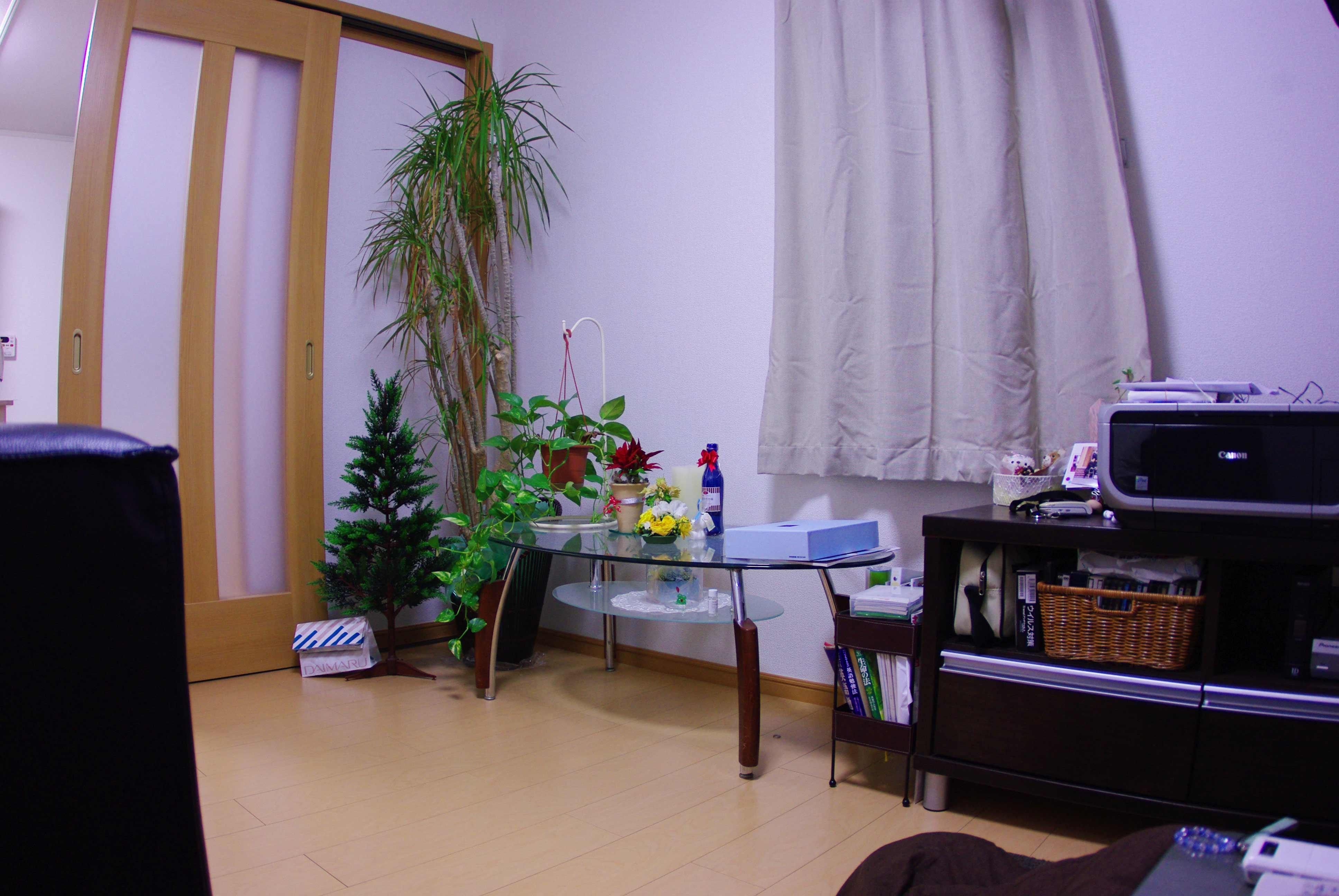 f0194243_20352654.jpg