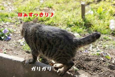 f0190851_0545180.jpg