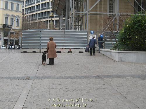 坊さん嫌いの野良犬君_f0037264_9371197.jpg