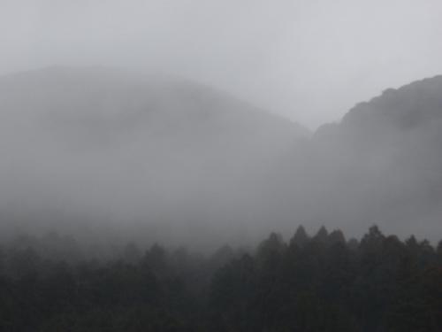 雨ばっかいでいやんなる_a0077071_2010109.jpg