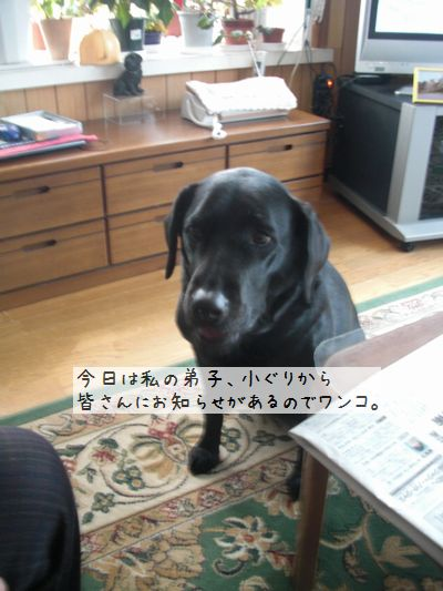 b0000885_1075630.jpg