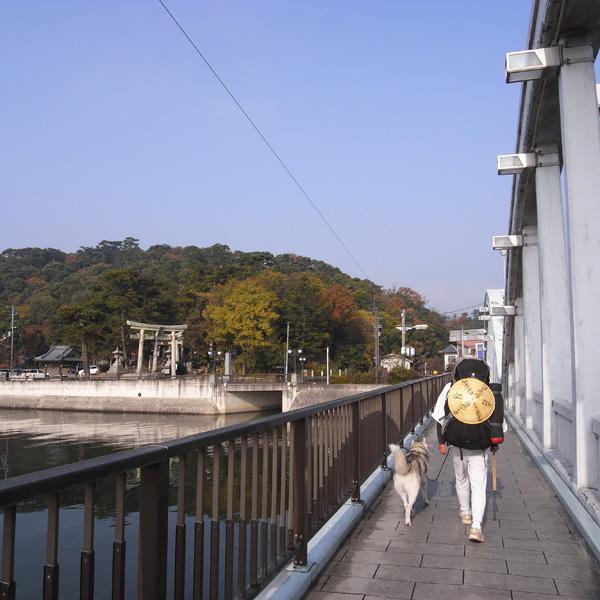 12月10日 おへんろ30日め♪ by GX100_c0049299_8272240.jpg
