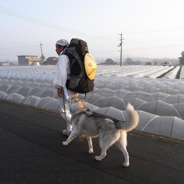 12月10日 おへんろ30日め♪ by GX100_c0049299_827387.jpg