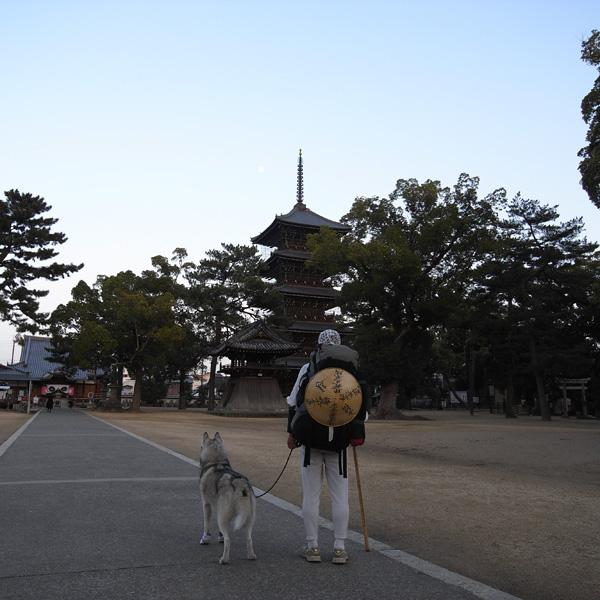 12月10日 おへんろ30日め♪ by GX100_c0049299_8294273.jpg