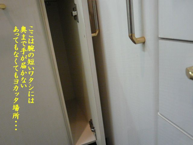 e0094407_17363680.jpg