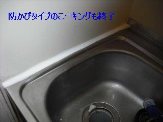 f0031037_19502421.jpg