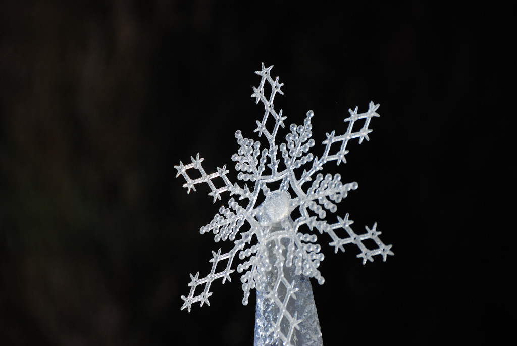 寒くなりますよ_c0171945_2044255.jpg
