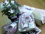 JAセカンドライフセミナー~鈴鹿篇~_b0096957_1254583.jpg