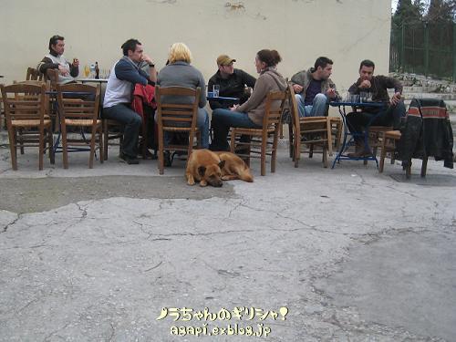 喫茶店の外席にいたオデュセア_f0037264_20562911.jpg