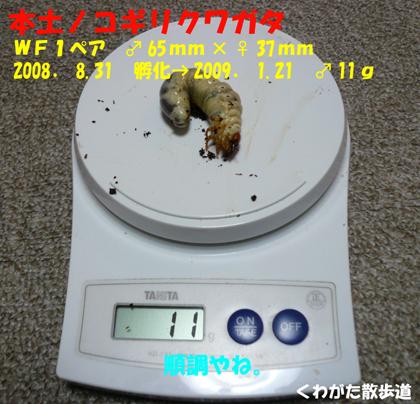 f0183484_17581827.jpg