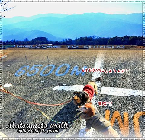 f0060689_264990.jpg