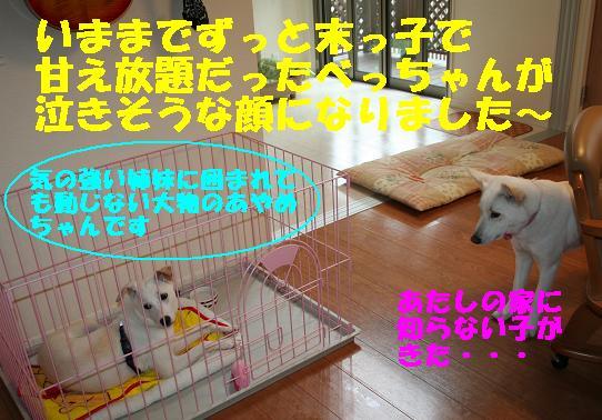 f0121712_13552740.jpg