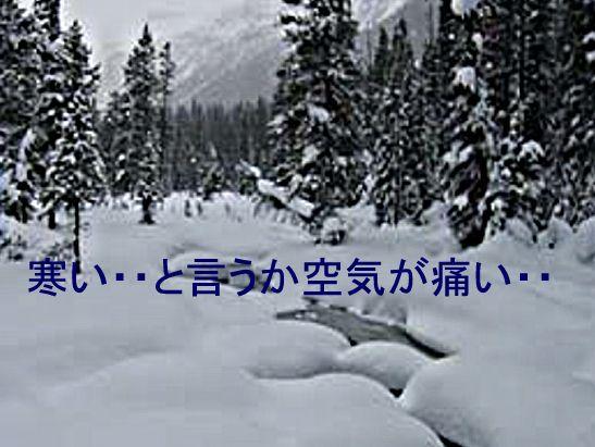 f0147821_1814452.jpg