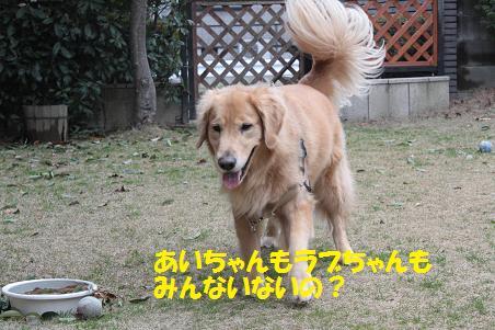 f0114128_1918051.jpg
