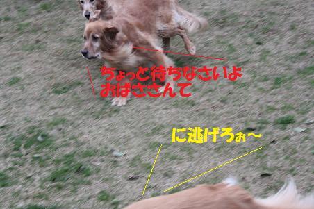 f0114128_19345033.jpg