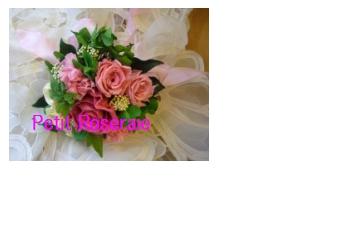 d0151229_0201243.jpg