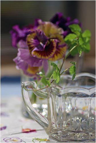 アンティークガラスに三色菫を挿して_f0012154_1274717.jpg
