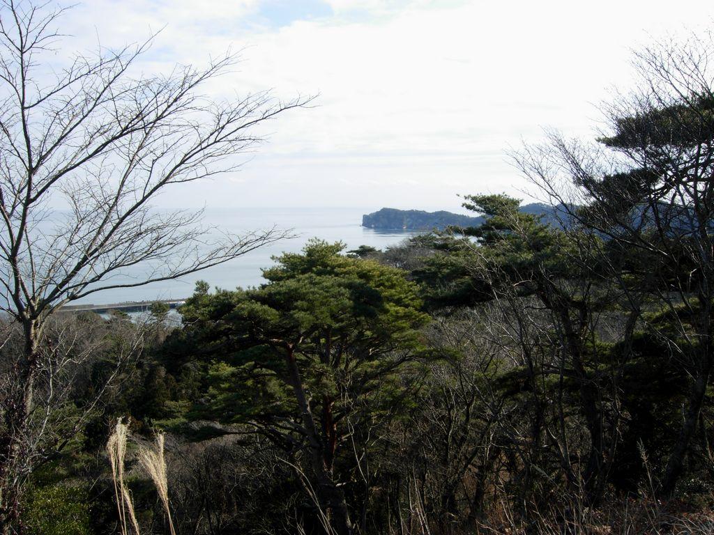 奥松島 2009年1月28日 嵯峨見台~室浜編_f0148627_23224144.jpg