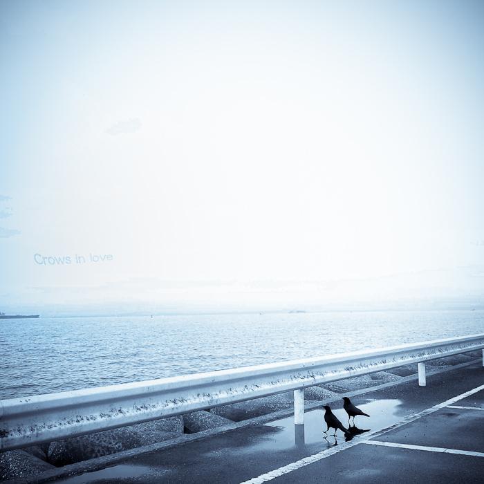 #2 横須賀の情熱_a0113732_2233982.jpg