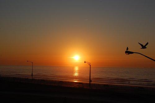 2月最初の朝日です_f0088456_224879.jpg