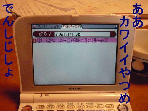 c0175759_1464565.jpg