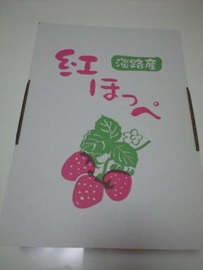 でっかい苺 紅ほっぺ~♪_e0123286_18471787.jpg