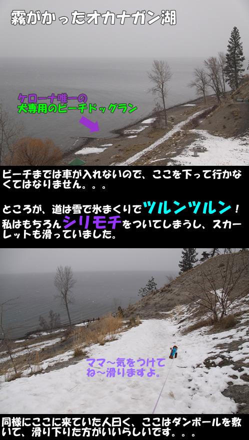 c0164491_14215860.jpg