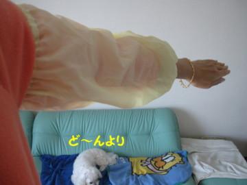 f0145192_15452427.jpg