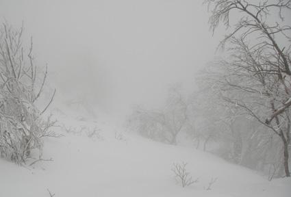 09.02.03(火) 雨びや~ん_a0062810_19372923.jpg