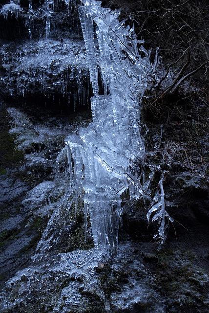 凍らない冬_e0132310_9494912.jpg