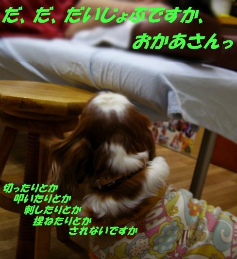 b0067012_2113261.jpg