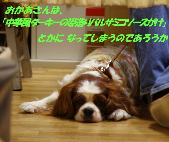 b0067012_21134739.jpg