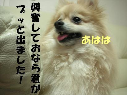 c0179136_181899.jpg