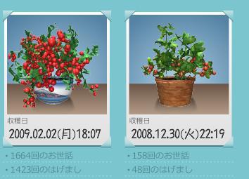d0057441_0245377.jpg