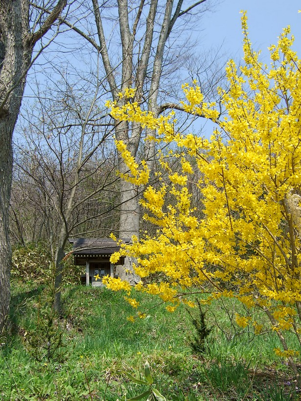 立春ですから。_d0001843_22453457.jpg