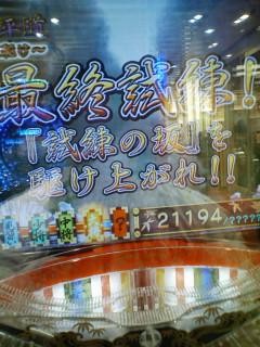 b0020017_1540314.jpg