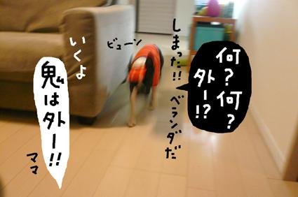 f0170072_013673.jpg