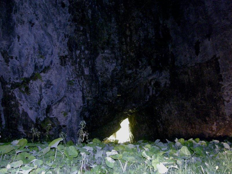 洞窟_f0075075_20501369.jpg