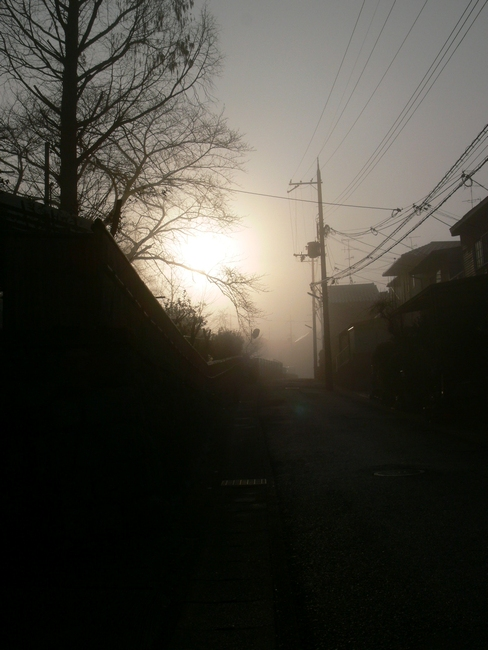 「京都・大亀谷・霧の朝」_d0133024_10123992.jpg