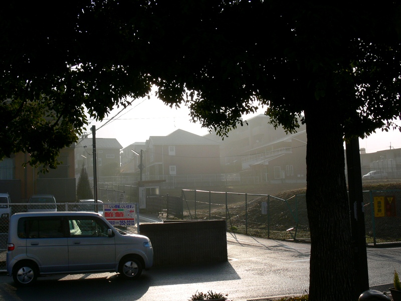 「京都・大亀谷・霧の朝」_d0133024_10133969.jpg