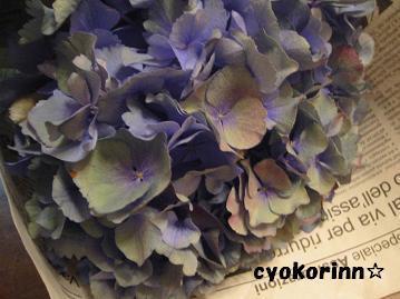 f0185935_2205211.jpg