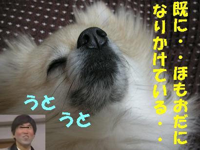 c0179136_258561.jpg