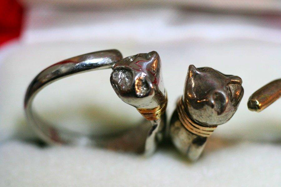 Twin cat rings_b0060239_21322791.jpg