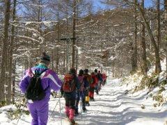 入笠山は春でした_f0019247_23285143.jpg