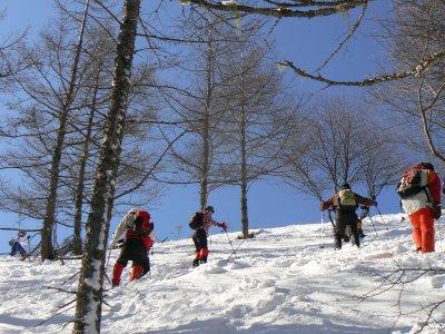 入笠山は春でした_f0019247_23291397.jpg